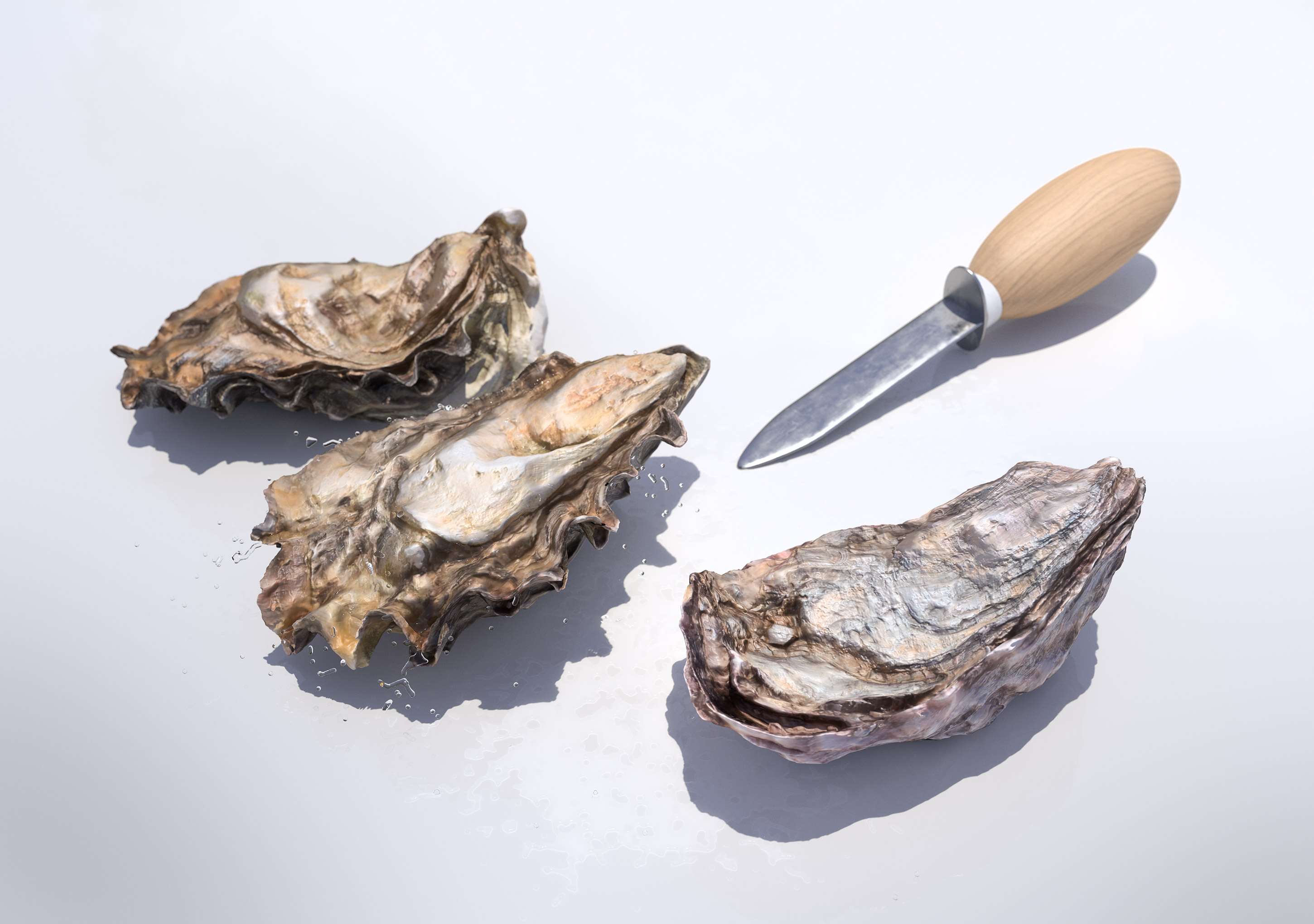 Shucking Oysters | Steve Hansen Images Seattle Food Photographer