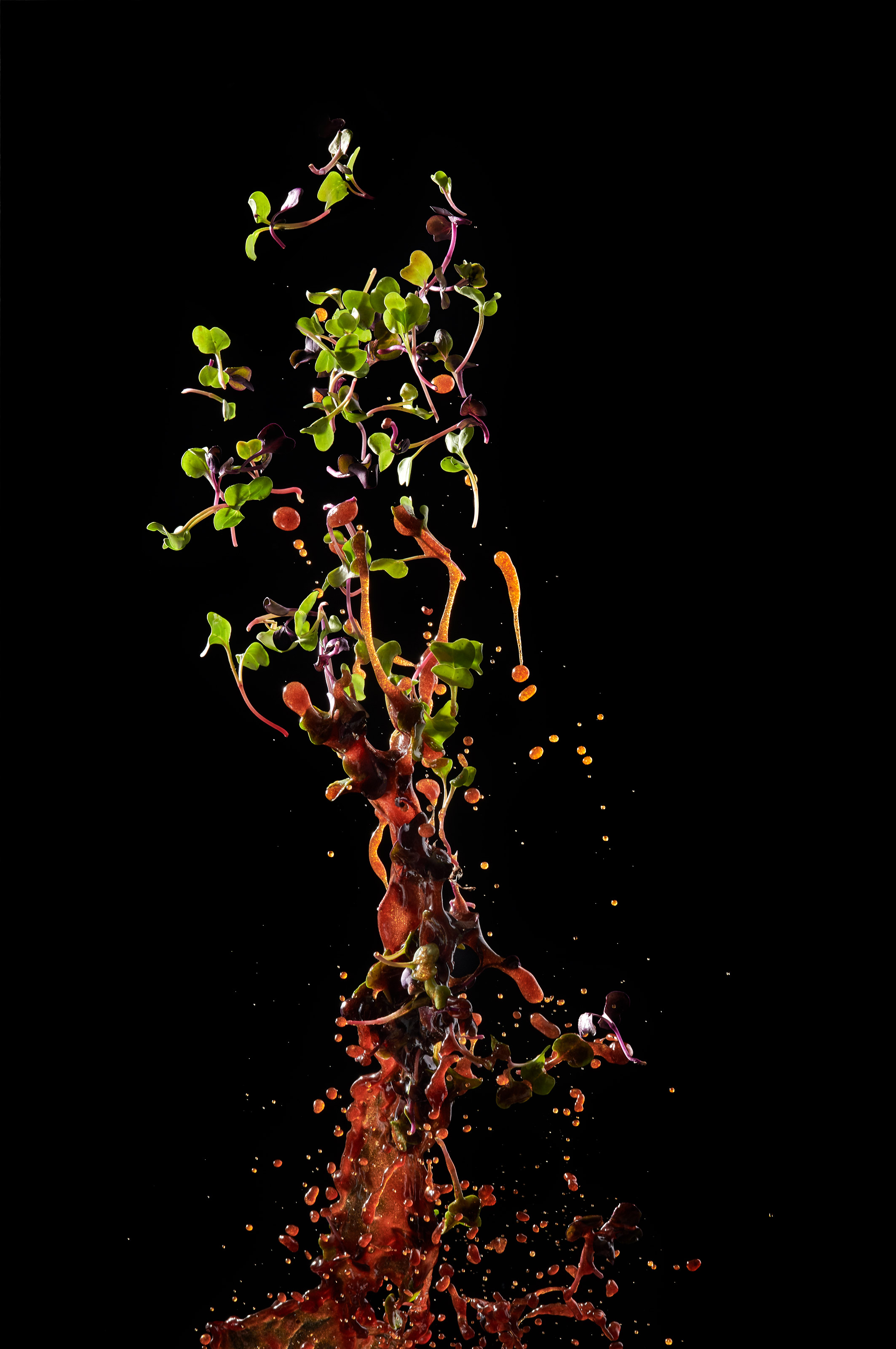 Salad Balsamic Oil Toss | Steve Hansen food photography Seattle